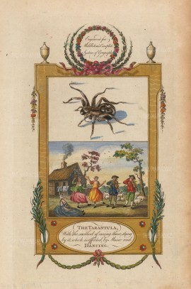 SOLD Tarantism, considered a form of possession from the spider's bite, was believed to be cured with music and dancing.