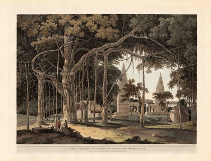 Agori: The temples of Kali and a great Banyan tree on the river Son.