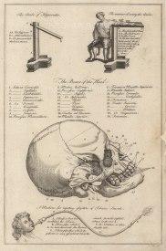 "Dr Mortherby: The Skull. 1775. An original antique copper-engraving. 7"" x 12"" . [NATHISp7294]"