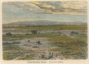Geiltbeck: South Africa. 1897. A hand-coloured original antique wood-engraving. 5 x 4 inches [AFRp1184]