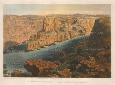 """Baines: Zambesi River, Zambia and Zimbabwe 1865. An original antique chromolithograph. 17"""" x 13"""". [AFRp1191]"""