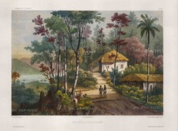 Penang Island:View from colonial houses overlooking the port. After Theodore-Auguste Fisquet, artist on the voyage of La Bonite 1836-7.