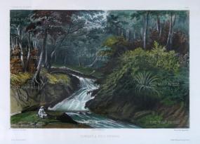 Penang Island: Batu Ferrenghi Waterfalls. After Barthelemy Lauvergne, artist on the voyage of La Bonite 1836-7.