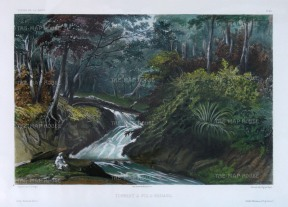 Vaillant: Penang Island. Circa 1850. A hand-coloured original antique lithograph. 15 x 10 inches. [SEASp1350]