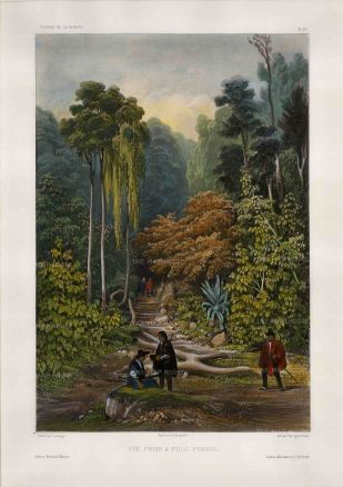 Penang Island: George Town.Penang Botanic Garden. View in the Spice Garden. After Barthelemy Lauvergne, artist on the voyage of La Bonite 1836-7.