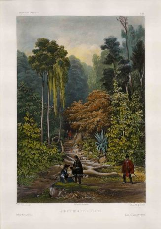 George Town, Penang Island: Penang Botanic Garden, Spice Garden. After Barthelemy Lauvergne, artist on the voyage of La Bonite 1836-7.