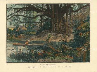 "llustrated London News: Takoe. 1890. A hand coloured original antique wood engraving. 9"" x 5"". [SEASp1534]"