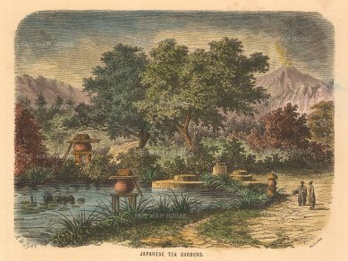 Collins: Japanese Tea Gardens. A hand-coloured original antique wood-engraving. 5 x 4 inches. [SEASp1552]