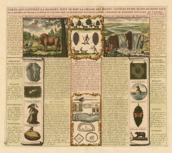Buffalo and Elk hunting, Niagara Falls, Arms of Native Indians with text in French.