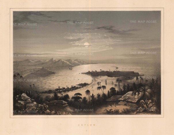 Anderson: Colombo, Sri Lanka. 1859. An original colour antique lithograph. 10 x 8 inches. [INDp966]