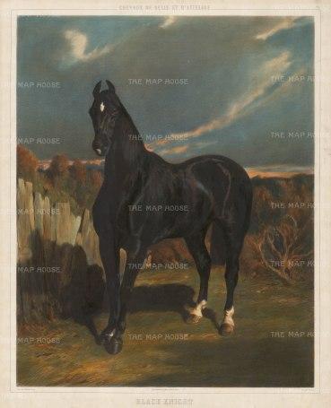"""Lemercier: Black Knight. 1860. An original colour antique lithograph. 20"""" x 25"""". [NATHISp2319]"""