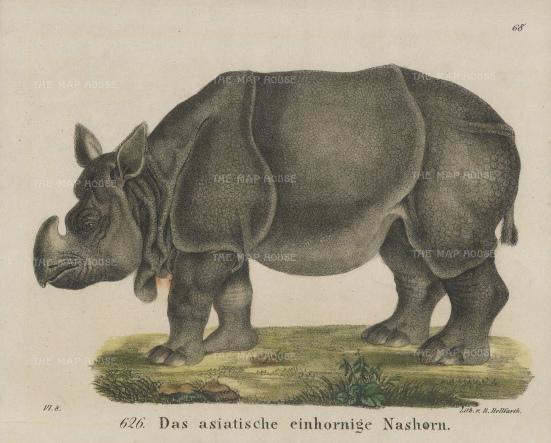 NATHISp7441w