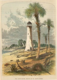 "Picturesque America: Jacksonville, Florida. 1876. A hand coloured original antique wood engraving. 7"" x 9"". [USAp4314]"