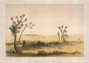 U. S. P. R. R. Experdition & Survey: Oklahoma. 1857. A hand-coloured original antique lithograph. 9 x 6 inches. [USAp4768]