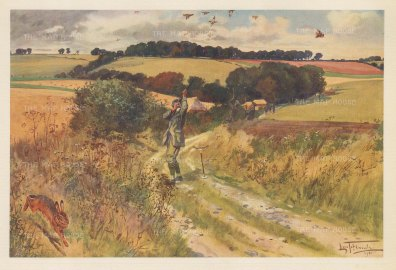 September. Hare escaping as guns shoot a drive. By the artist known as 'the grand old man of British sporting art'.