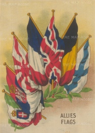 Flags of the Allies during the First World War.