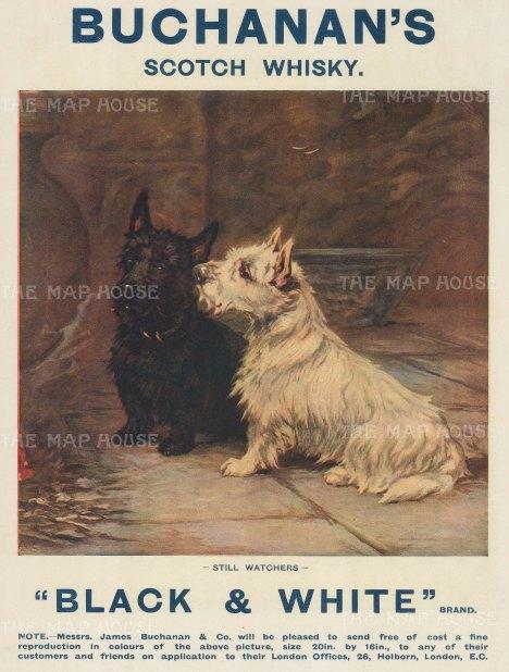 "Graphic Magazine: Buchanan's Scotch Whiskey. 1910. An original antique chromolithograph. 9"" x 12"". [DECp2091]"
