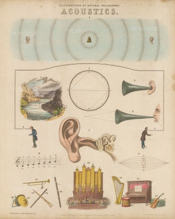Sound and Hearing (1-6), Ear (7), Musical Sounds (8-9), Musical Instruments (10-20). With Key.
