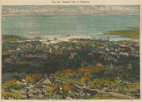 """RESERVED Reclus: Honolulu, Hawaii.1894. A hand coloured original antique wood engraving. 8"""" x 6"""". [USAp4563]"""