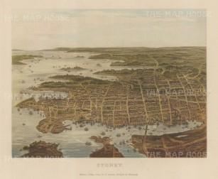 """Collins: Sydney. c1880. An original antique chromolithograph. 10"""" x 8"""". [AUSp720]"""