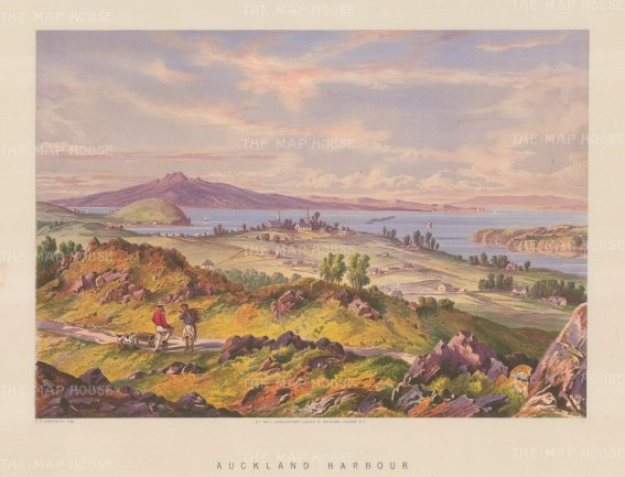 "Barraud: Auckland Harbour. 1877. An original antique chromolithograph. 17"" x 12"". [NWZp160]"