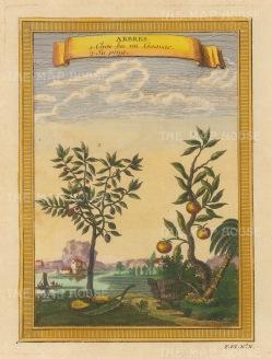 "Bellin: Goavas and Su Ping. 1748. A hand coloured original antique copper engraving. 6"" x 8"". [NATHISp7133]"