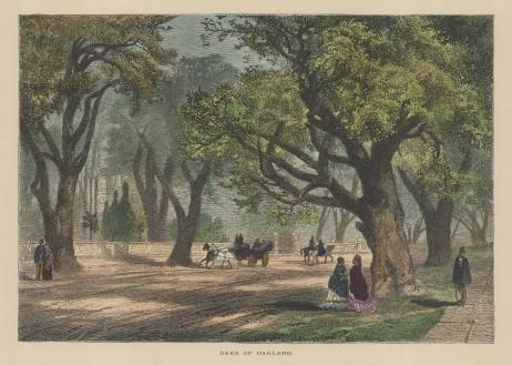 "Picturesque America: Oakland, California.1872. A hand coloured original antique wood engraving. 10"" x 7"". [USAp4840]"