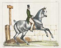 "Ledieu: Horse and rider. 1834. A hand coloured original antique lithograph. 9"" x 7"". [NATHISp2711]"