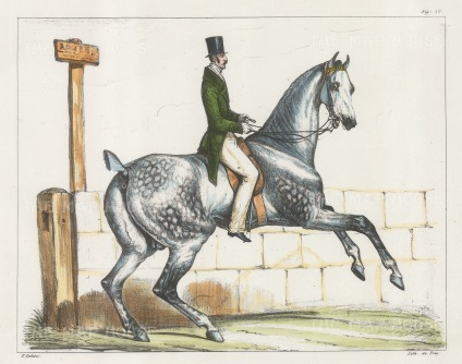 "Ledieu: Horse and rider. 1834. A hand coloured original antique lithograph. 9"" x 7"". [NATHISp2711]"