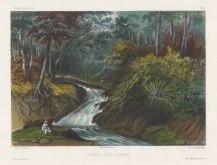 Penang Island: Batu Ferrenghi Waterfalls. After Barthélemy Lauvergne, one of the artists on the voyage of La Bonite 1836-7.