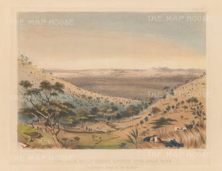 "Angas: Hall's Gulley, Angas Park 1846. An original colour antique lithograph. 9"" x 7"". [AUSp44]"
