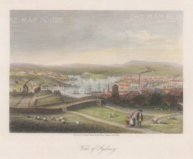 "Bibby: Syney. c1860. hand coloured original antique steel engraving. 8"" x 7"". [AUSp724]"