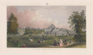 "Adlard: Kew Gardens. c1890. A hand coloured original antique steel engraving. 18"" x11"". [LDNp8444]"