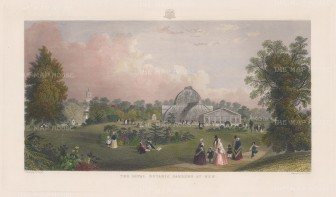 "Adlard: Kew Gardens. c1890. A hand coloured original antique steel engraving. 18"" x11"". [LDNp8444]"