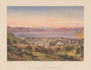 "Barraud: Wellington. 1877. An original antique chromolithograph. 17"" x 12"". [NWZp158]"