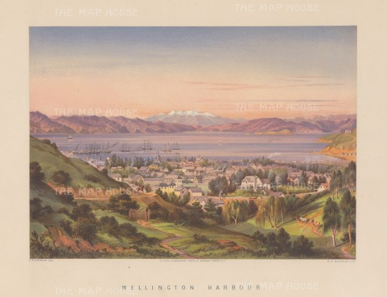 "Barraud: Wellington. 1877. An original antique chromolithograph. 17"" x 12"". [NWZp158]"