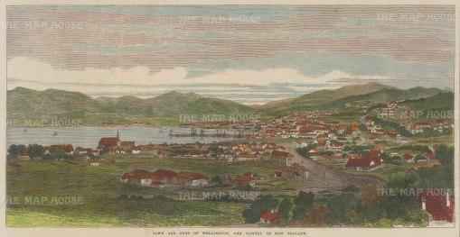 "Illustrated London News: Wellington. 1869. A hand coloured original antique wood engraving. 14"" x 7"". [NWZp285]"
