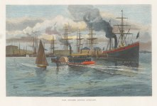 "Picturesque Australia: Auckland. c1880. A hand coloured original antique wood engraving. 11"" x 7"". [NWZp288]"