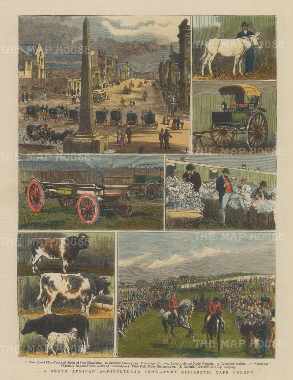 "Graphic Magazine: Port Elizabeth Agricultural Show. 1882. A hand coloured original antique wood engraving. 9"" x 13"". [AFRp1237]"