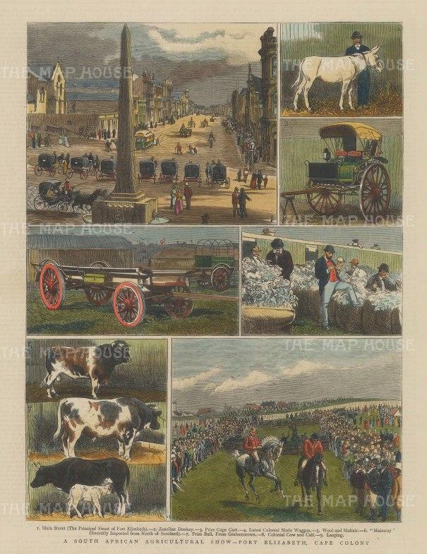 "Graphic Magazine: Port Elizabeth Agricultural Show. 1882. A hand coloured original antique wood engraving. 9"" x 13"". [AFRp1237]"