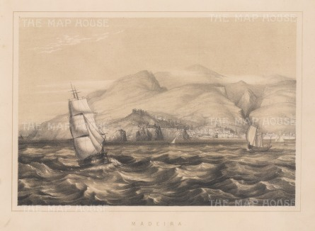 "Anderson: Madeira. 1859. An original antique lithograph. 11"" x 8"". [AFRp981]"