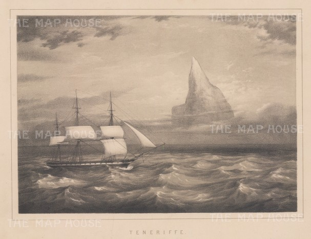 """Anderson: Tenerife, Canary Islands. 1859. An original antique lithograph. 11"""" x 8"""". [AFRp982]"""