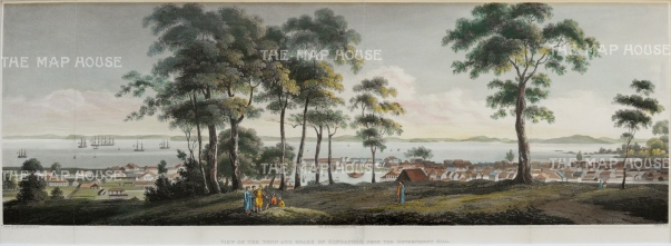 Rare and Important early panorama. Singapore from Government Hill (Fort Canning) looking towards the straits.