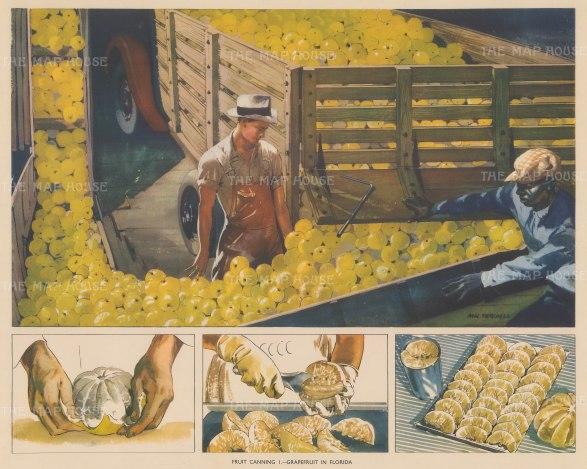 "Packham: Grapefruit Canning, Florida. 1940. An original vintage chromolithograph. 19"" x 15"". [USAp4869]"
