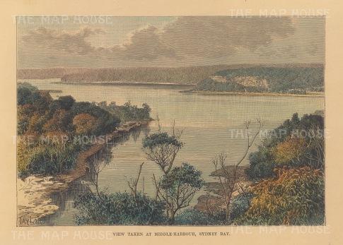 "Reclus: Sydney Bay. 1894. A hand coloured original antique wood engraving. 8"" x 6"". [AUSp728]"