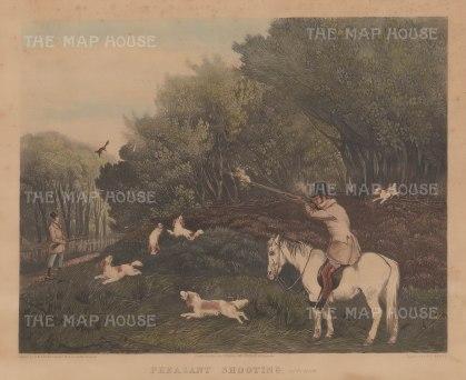 """McClean: Pheasant Shooting. 1836. An original colour antique aquatint. 20"""" x 16"""". [FIELDp1424]"""