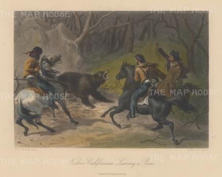 "Picturesque America: Lassoing a bear, California. c1874. A hand coloured original antique steel engraving. 10"" x 8"". [USAp4041]"