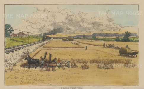 """Illustrated London News: Kansas Wheat-filed. 1885. A hand coloured original antique wood engraving. 9"""" x 6"""". [USAp4577]"""