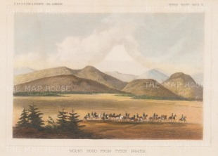 View from Tysch Prairie.