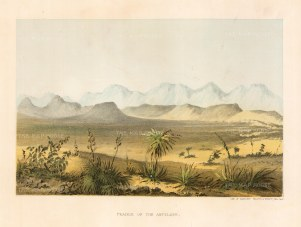 "U.S.P.R.R. Exp.: Antelope Prairie, Wyoming. 1857. A hand coloured original antique lithograph. 10"" x 7"". [USAp4770]"